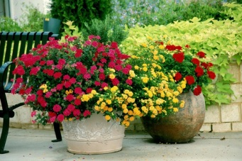 jardins-decorados-vasos-flores-04