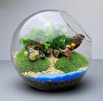 Vetplanten-glazen-vaas-schuine-mond-glazen-bol-micro-ecologische-landschap-glas-waterfles-moss-diy-glas.jpg_640x640