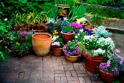 como-fazer-um-jardim-com-vasos-15