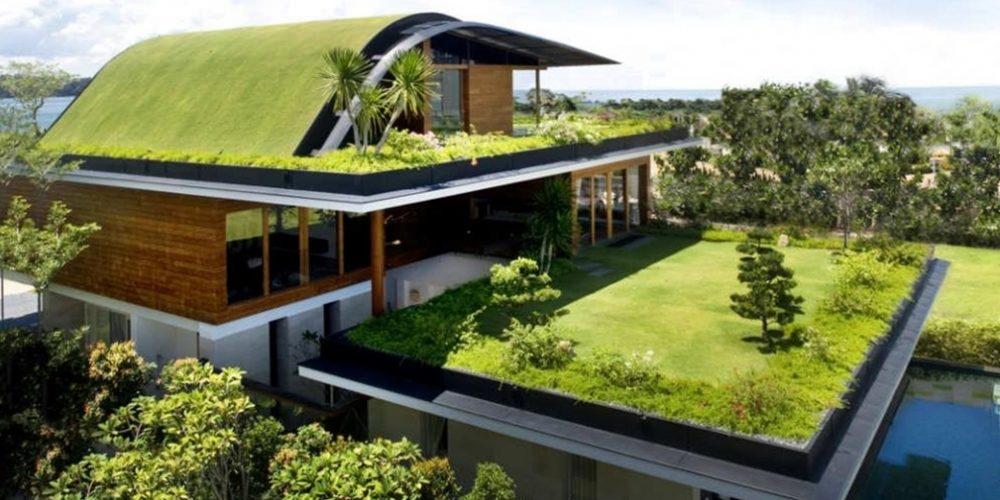 Arquitetura_-como-criar-um-telhado-verde_-1000x500