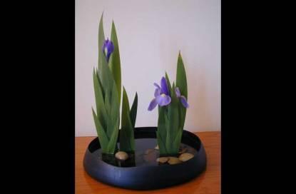 ikebana-arranjo-flores