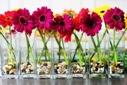 Com-flores-individuais